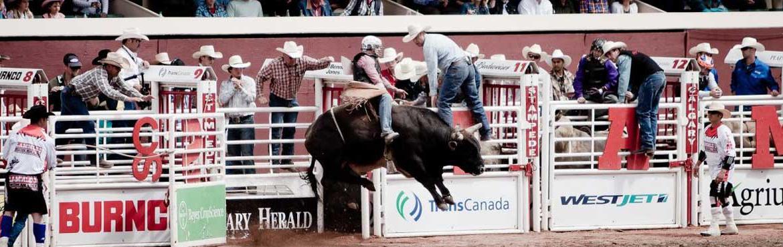 Calgary Stampede
